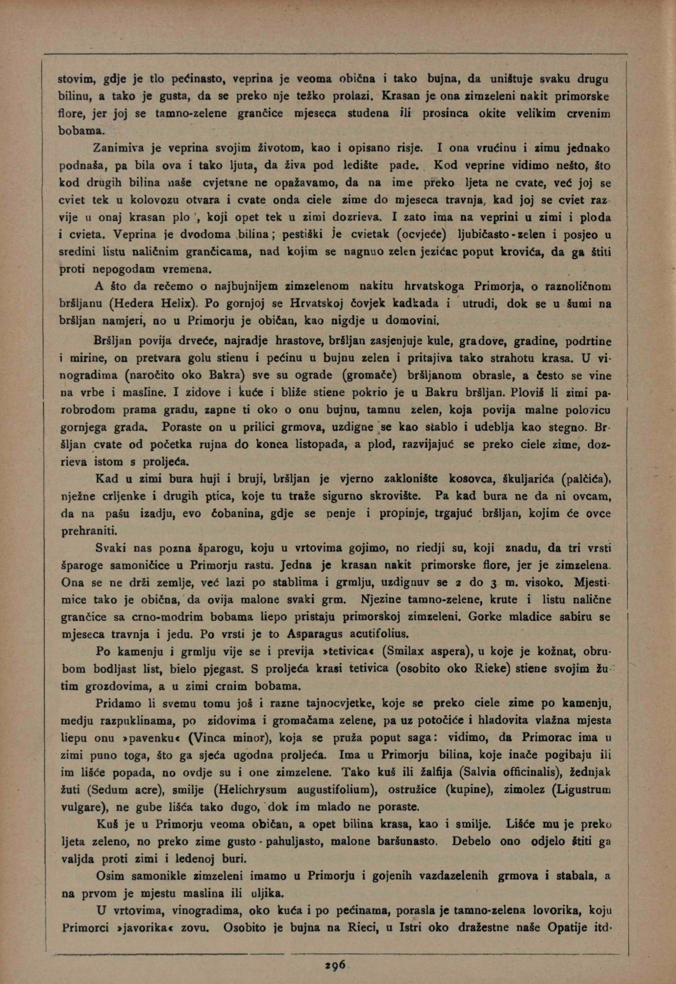Hrvatsko Primorje Slike Opisi I Putopisi Napisao